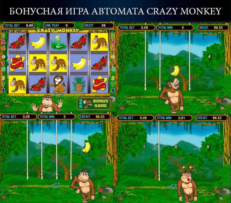 бонусна гра автомата Crazy-monkey