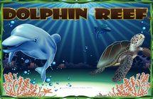 Dolphins Reef / Риф дельфина