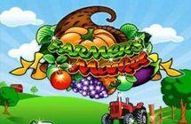 Farmers Market / Фермерский рынок