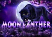 Panther Moon / Місячна пантера