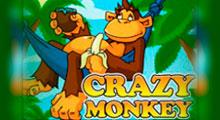 Вулкан - бесплатный автомат обезьянки