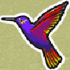 Символ Колібрі
