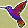 Символ Колибри
