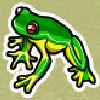 Символ Лягушки