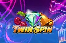 Twin Spin / Подвійний спін