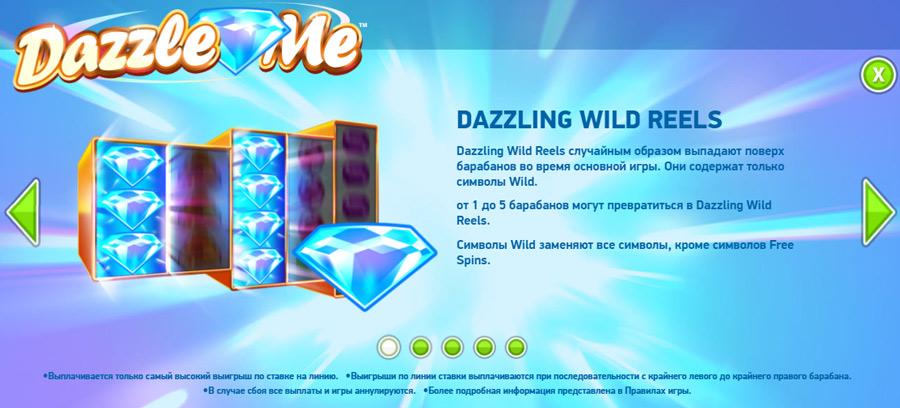 dazzle wild