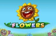 Flowers / Квіти