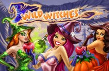 Wild Witches / Дикие ведьмы