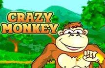 Crazy Monkey / Обезьянки