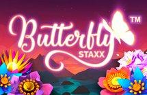 Butterfly Staxx / Бабочки